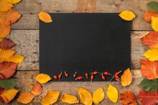Quadro de folhas de outono na superfície do quadro-negro