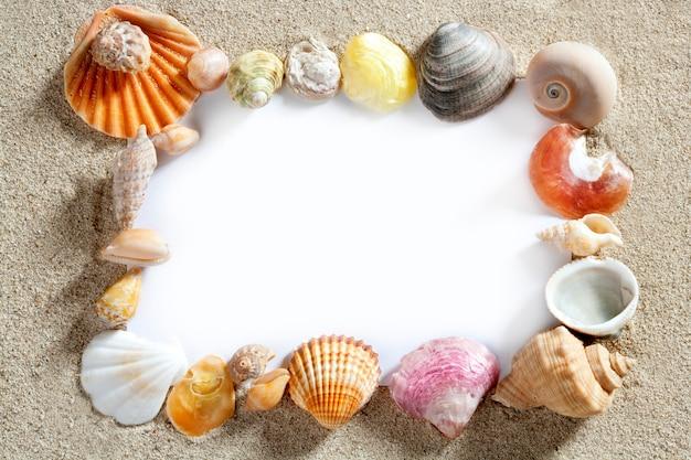 Quadro de fronteira verão praia shell em branco cópia espaço
