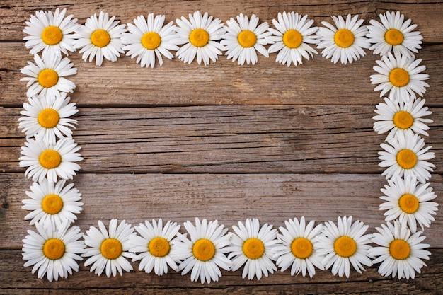Quadro de fundo de flores, horizontalmente