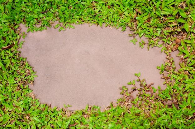 Quadro de grama verde em arenito vermelho pálido no parque