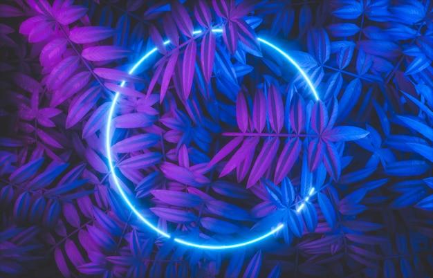 Quadro de néon abstrato com fundo de folhas tropicais.