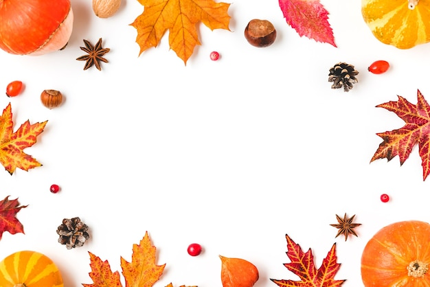 Quadro de outono feito de folhas de outono, abóboras, flores, frutas e nozes isoladas