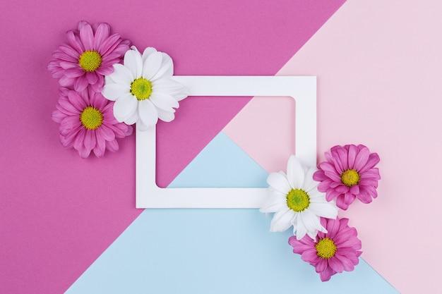Quadro de papel vazio com flores brancas em uma parede multicolorida de azul e roxa. conceito de cartão de férias da primavera. composição em tons pastel.