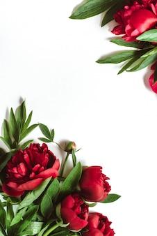 Quadro de peônias vermelhas flores em branco