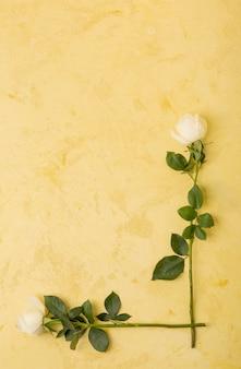 Quadro de rosas brancas naturais com espaço de cópia