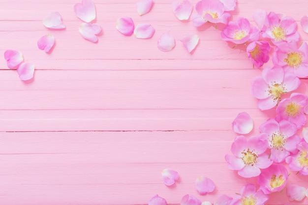 Quadro de rosas rosa em fundo rosa de madeira