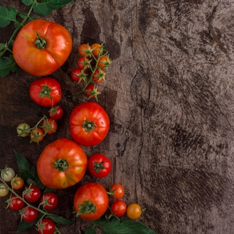 Quadro de tomates deliciosos da vista superior