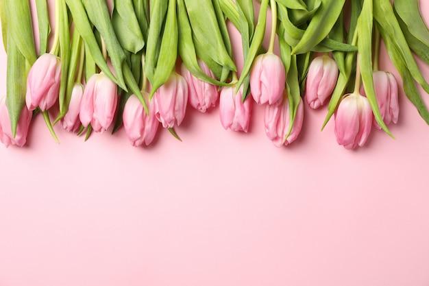 Quadro de tulipas em rosa, vista superior e espaço para texto