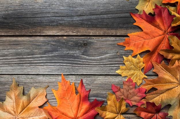 Quadro de vista superior com folhas coloridas e cópia-espaço