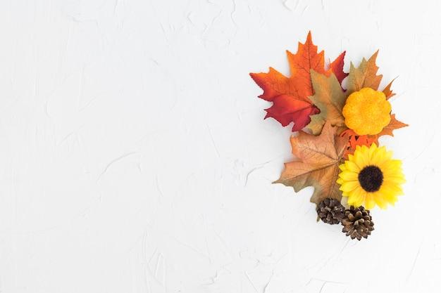 Quadro de vista superior com folhas e girassol