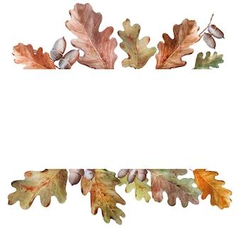 Quadro em aquarela com galhos de carvalho, folhas e bolotas