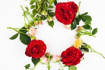 Quadro em branco circular feito com rosas em fundo branco em branco