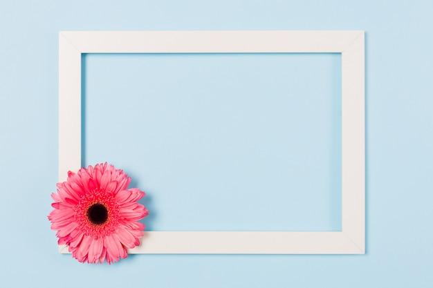 Quadro em branco vazio quadro branco com flor rosa no canto sobre fundo azul claro