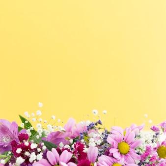 Quadro floral de vista superior com cópia-espaço