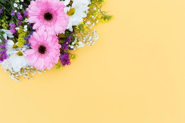 Quadro floral de vista superior com fundo amarelo