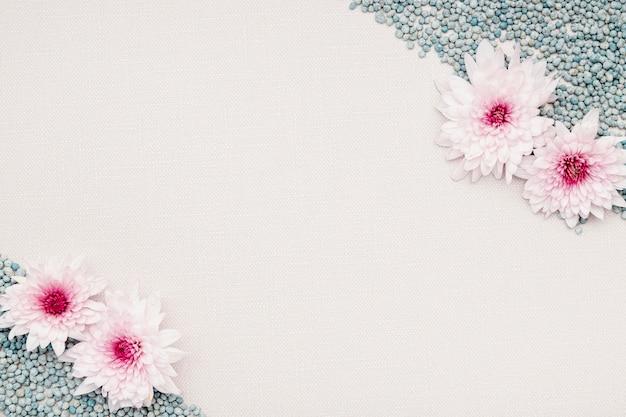 Quadro floral de vista superior com seixos