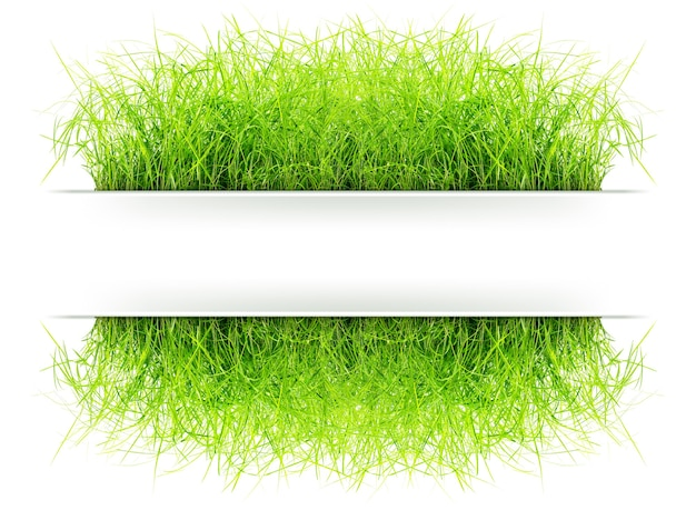 Quadro indicador de grama para adicionar seu texto em conceito natural isolado no fundo branco