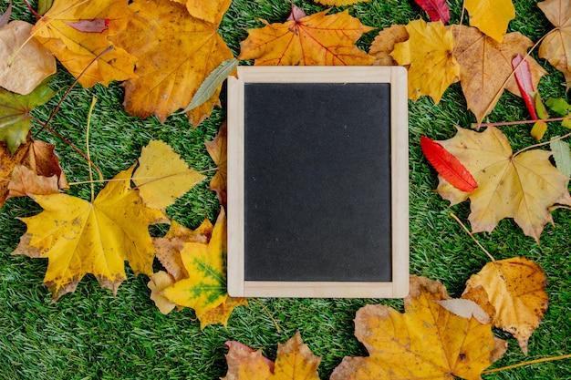 Quadro-negro e folhas no fundo verde do gramado