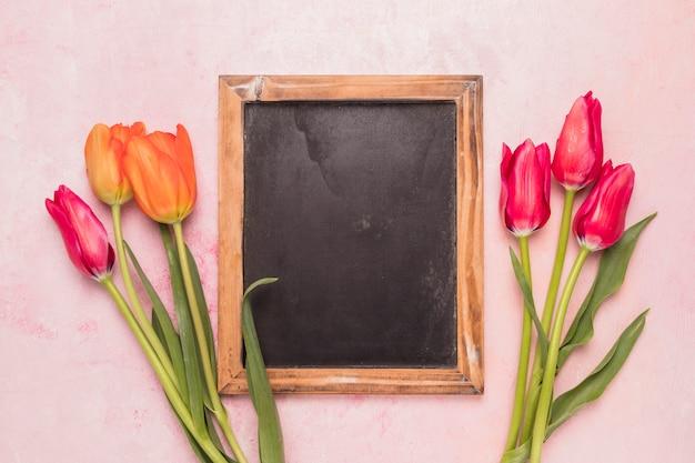 Quadro negro entre tulipas