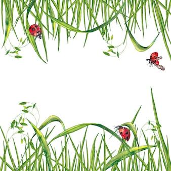 Quadro paralelo de grama verde fresca de verão realista com espigas e joaninhas. pintura aquarela.