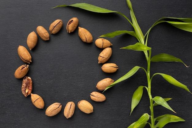Quadro plano de sementes circulares