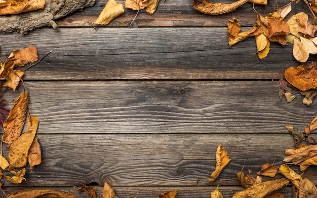 Quadro plano leigo com folhas secas e cópia-espaço