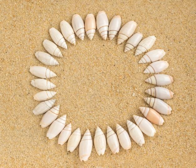 Quadro redondo de conchas do mar na areia