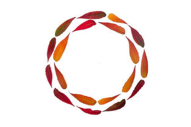 Quadro redondo de folhas de outono brilhantes isolado no branco