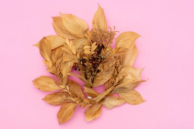 Quadro redondo ou grinalda de elderflowers sobre fundo azul, vista superior