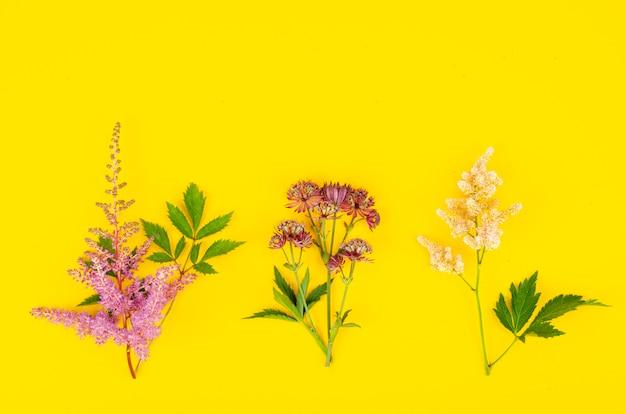 Quadro simulado com flores brilhantes no jardim sobre fundo amarelo. foto do estúdio.