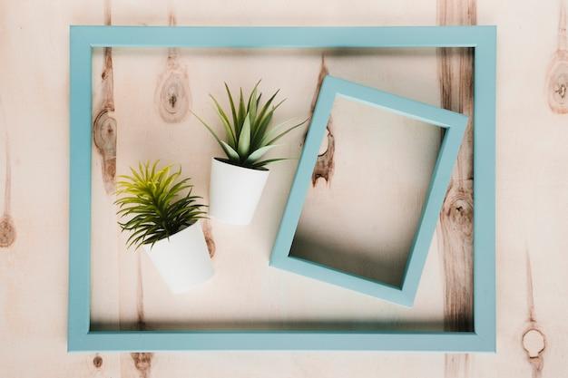 Quadros azuis e plantas com fundo de madeira