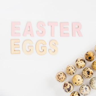 Quail easter eggs in rack