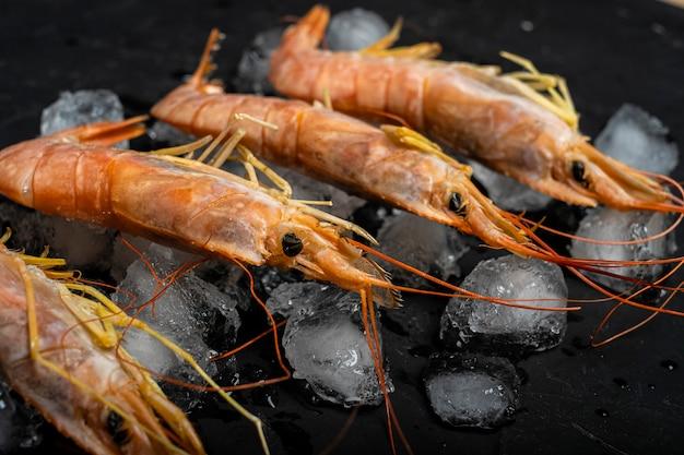 Quatro pedaços de camarão em pedaços de gelo