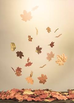 Queda de folhas caindo no feixe de luz