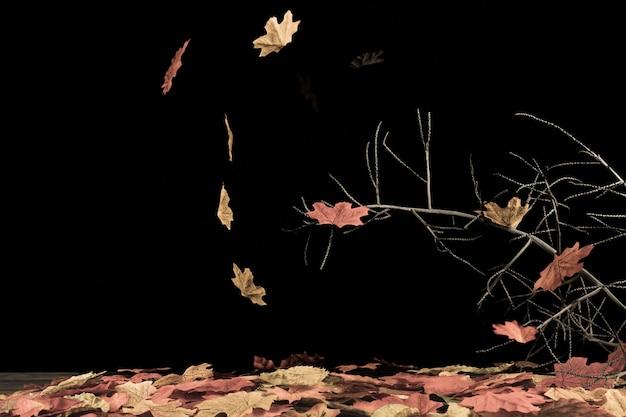 Queda de folhas girando pelo vento na superfície preta