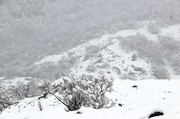 Queda de neve forte no inverno em um vale da montanha do cáucaso
