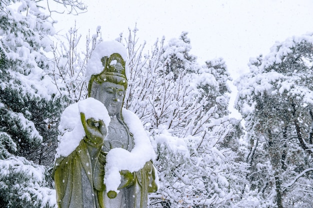 Queda de neve na estátua de guanyin em um inverno com árvores cobertas de neve