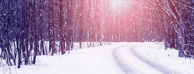 Queda de neve na floresta de inverno durante o pôr do sol, estrada na floresta de inverno