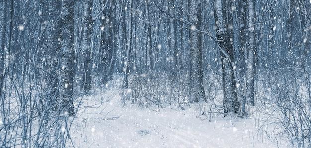 Queda de neve na floresta de inverno. paisagem com uma estrada na floresta de inverno durante uma nevasca