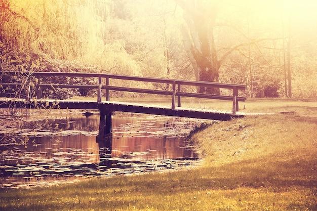 Queda no parque. outono.