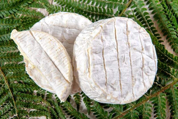 Queijo camembert tradicional normandia francês, produtos lácteos