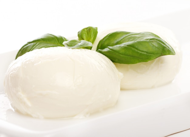 Queijo mozarella branco com folhas de hortelã