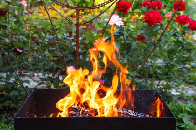 Queima de madeira em um braseiro. fogo, chamas. grill ou churrasco