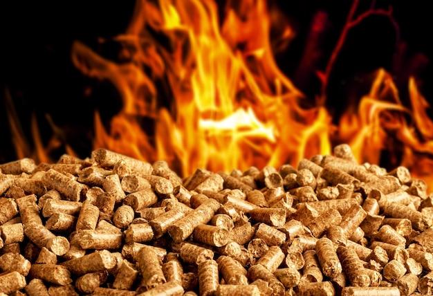 Queima de pellets de madeira, uma fonte renovável