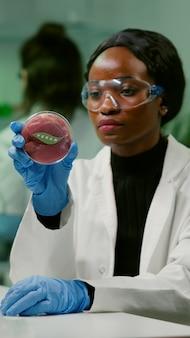 Químico examinando amostra de carne vegana cultivada em laboratório para experiência em microbiologia