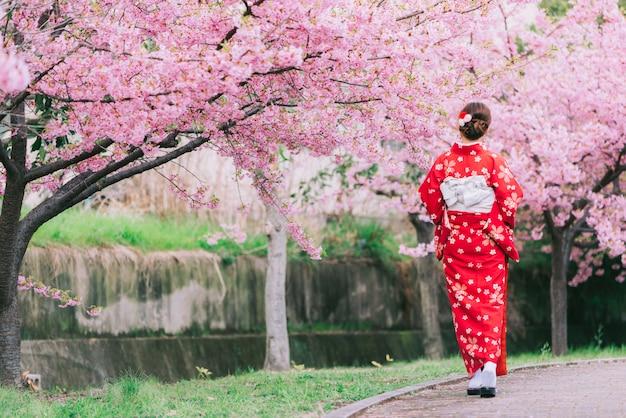 Quimono vestindo da mulher asiática com flores de cerejeira, sakura em japão.