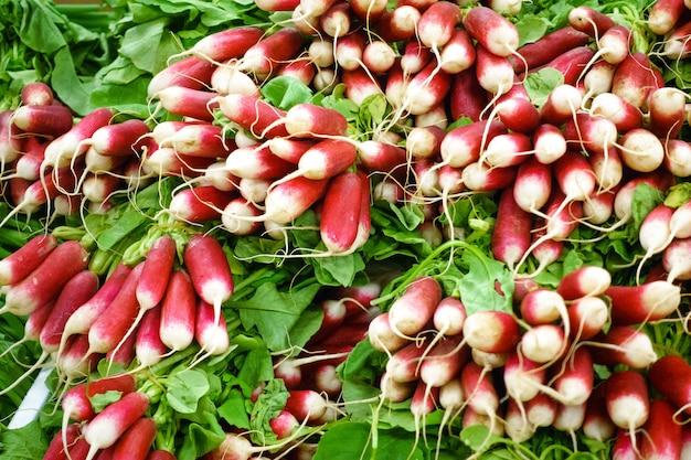 Rabanetes orgânicos em um mercado de agricultores locais