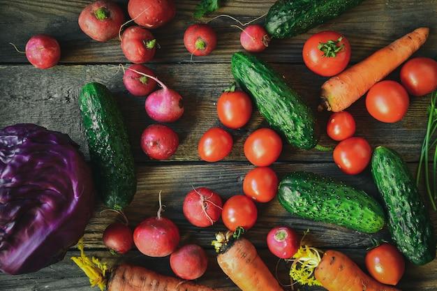 Rabanetes, tomates, pepinos, cenouras, repolho roxo.