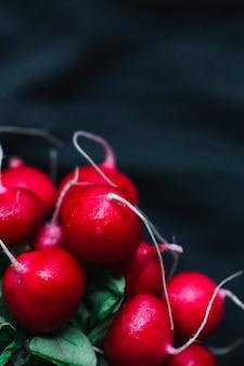 Rabanetes vermelhos orgânicos frescos