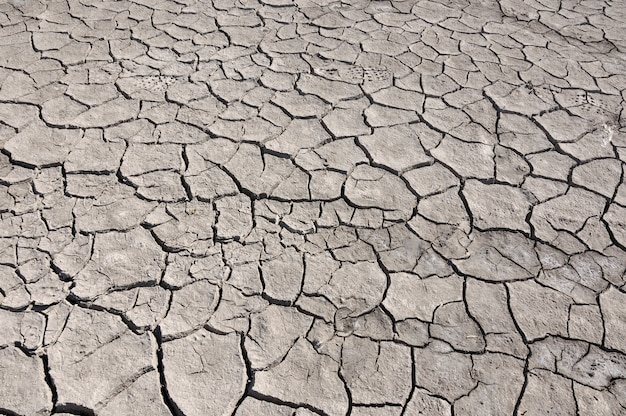 Rachado pela seca no chão